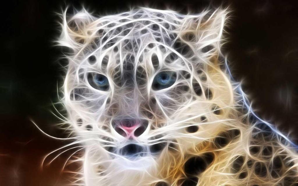 digital_feline-385244