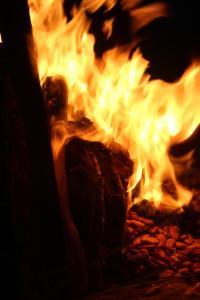 огонь на торе холь2