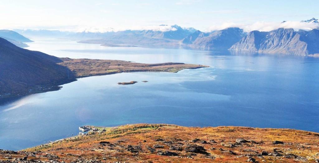 lyndenfjord